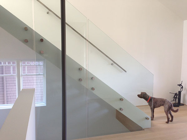 dog and stairs