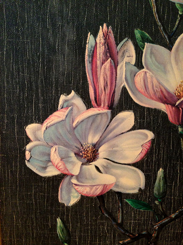 close up of the magnolia