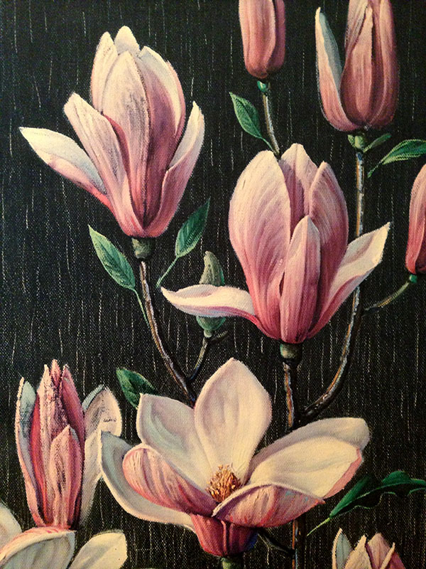 closeup magnolia 1